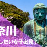 神奈川 パパ活